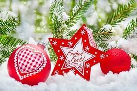 Kürbis Weihnachten cucurbita.com
